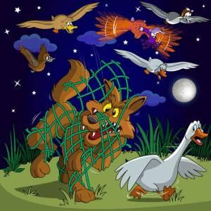 Duck Color Coyote Net pg31_net